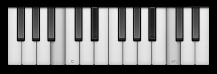 Symphony Pro for iPad